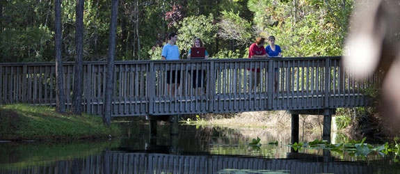 Students enjoy the natural beauty of UNF's campus from a bridge