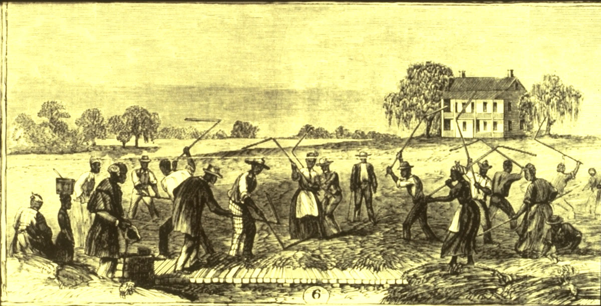an introduction to the history of slavery in maryland Slavery in the united states began soon after english colonists first settled virginia in 1607 and lasted as a legal institution until the passage of the.