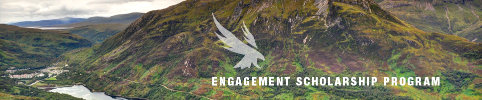 Engagement Scholarship Banner