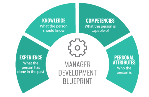 Graphic showing manager development blueprint - experience, knowledge, competencies, personal attributes