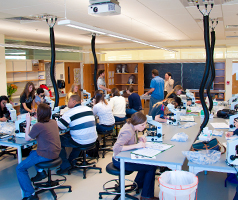 Students in the new labs.