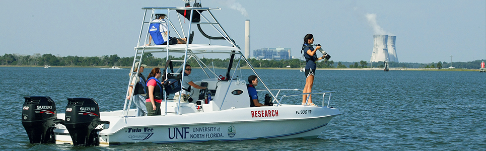 Dolphin Research Banner