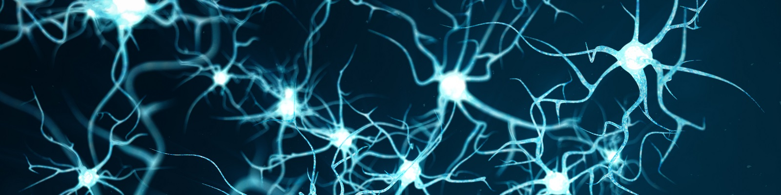 Neurons bounding about