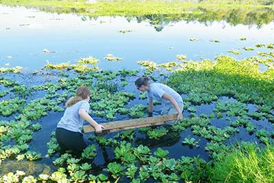 students in estuaries