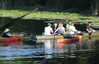 students and professor kayaking