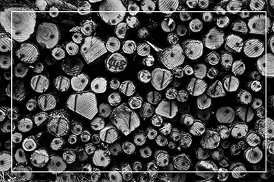 pile of wood in black and white