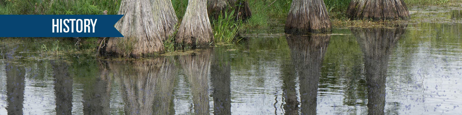 Okefenokee swamp with History written on it
