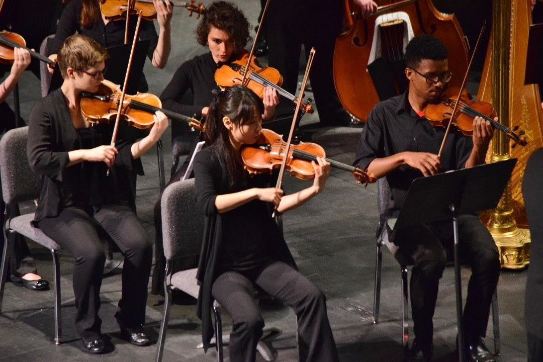 Orchestra violinists playing at a concert
