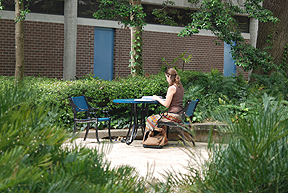 Student studying outdoor