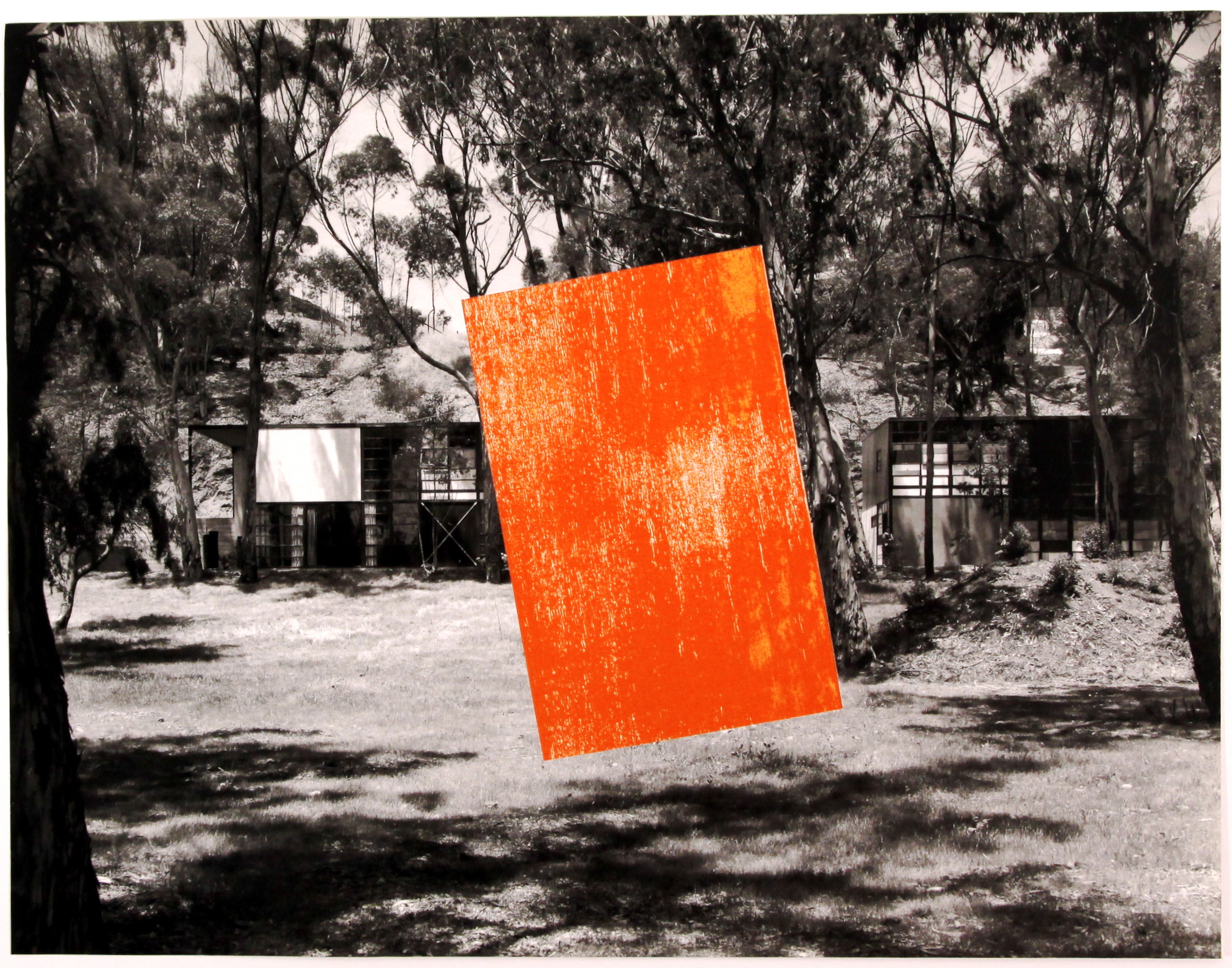 Scott Ingram image_Charlie Meet Malevich