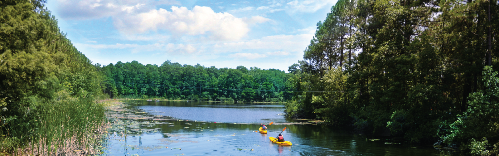 Two students kayaking on the river in UNF's nature preserve