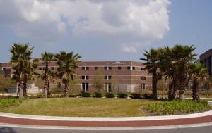 UNF coggin college of business building with palm trees in the foreground
