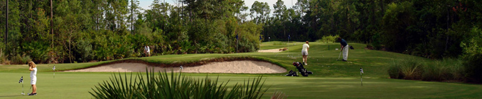 Image of The UNF Golf Complex Training Course