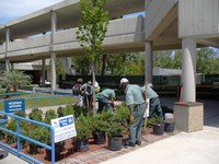 landscaping working at UNF