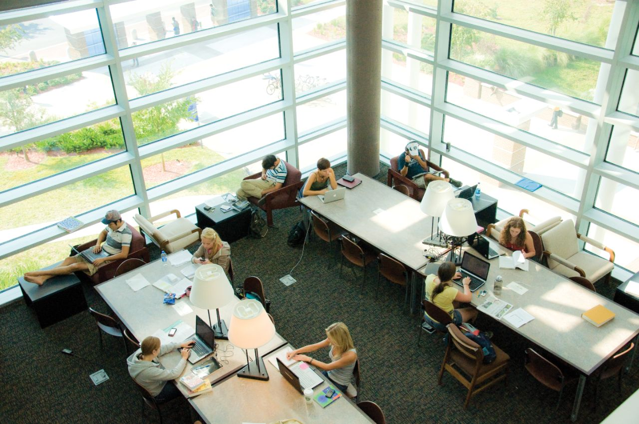 aerial shot of people studying at the library