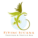 Flying Iguana logo 125x125