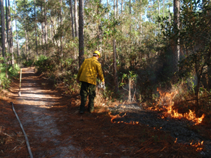 Workers from Environmental Services monitor the progress of most recent on-campus prescribed burn