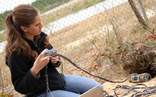 Student gopher tortoise research camera digs deep