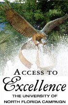 Access to Excellence and Osprey Fountain