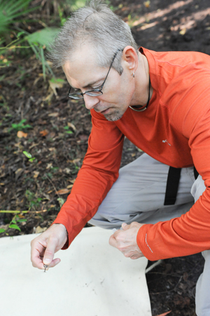 Dr. Kerry Clark uses the campus' nature preserve as his lab, hunting for ticks that might be used as test subjects in his research (Photo by Jennifer Grissom).
