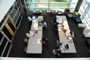 Students at work in the library (Photos by Jennifer Grissom).