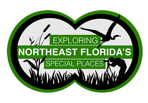 Graphic for film project titled Exploring Northeast Florida's Special Places