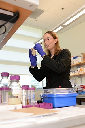 Dr. Amy Lane working in the lab