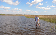Professor Eric Johnson in water near UNF wetlands