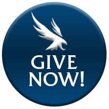give now button with Osprey