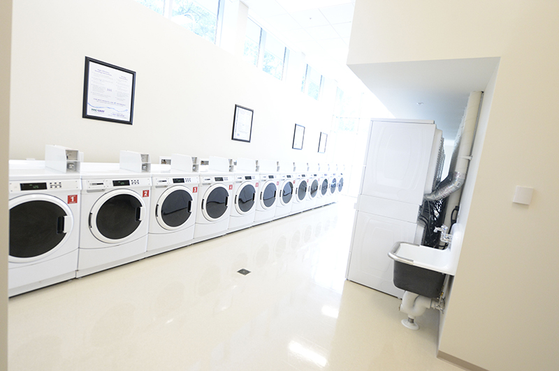 A bright room with cream colored walls lined with a row of white washers and dryers on the left and a doorway on the right.