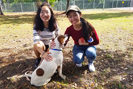students with dog volunteering at animal shelter