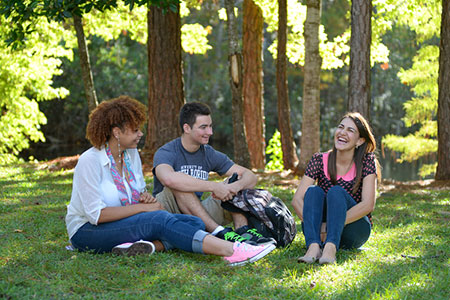 three students sitting and chatting on the grass
