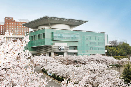 cherry blossom in front Kyungnam University main building