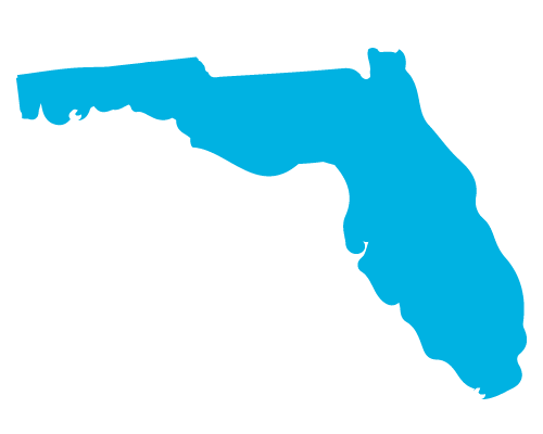 icon of the State of Florida